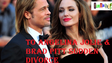 Irreconcilable Differences Lead to Angelina Jolie & Brad Pitt Sudden Divorce