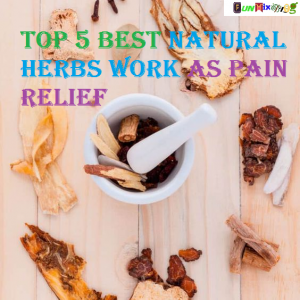 Top 5 Best Natural Herbs Work as Pain Relief